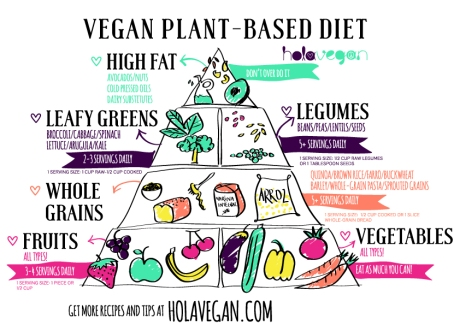 vegan-plantbased-diet-holavegan